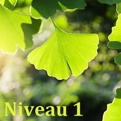formation naturo module Phytothérapie niveau 1