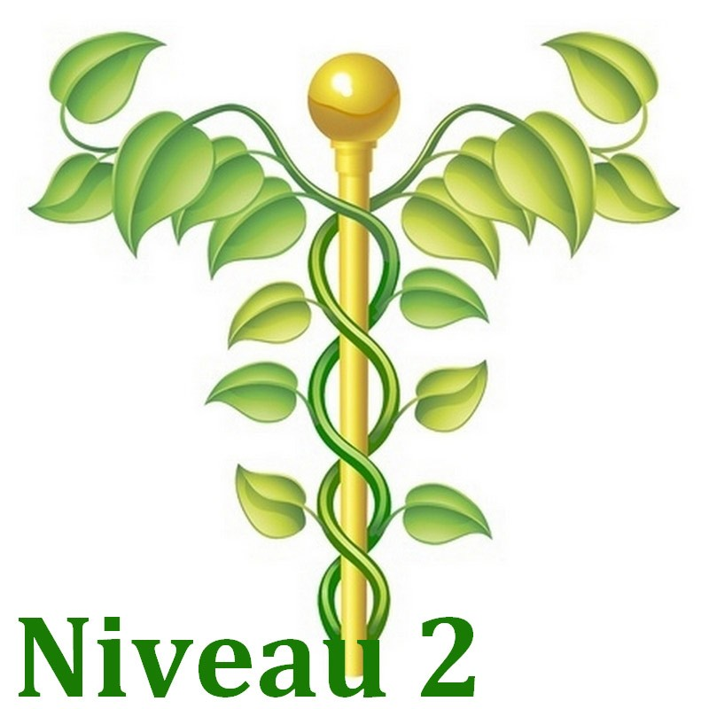 formation naturo module Bases de la naturopathie niveau 2