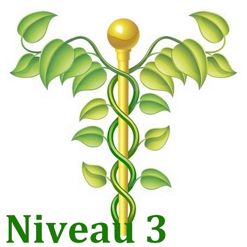formation naturo module Bases de la naturopathie niveau 3