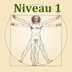 formation naturo module anatomie et physiologie niveau 1