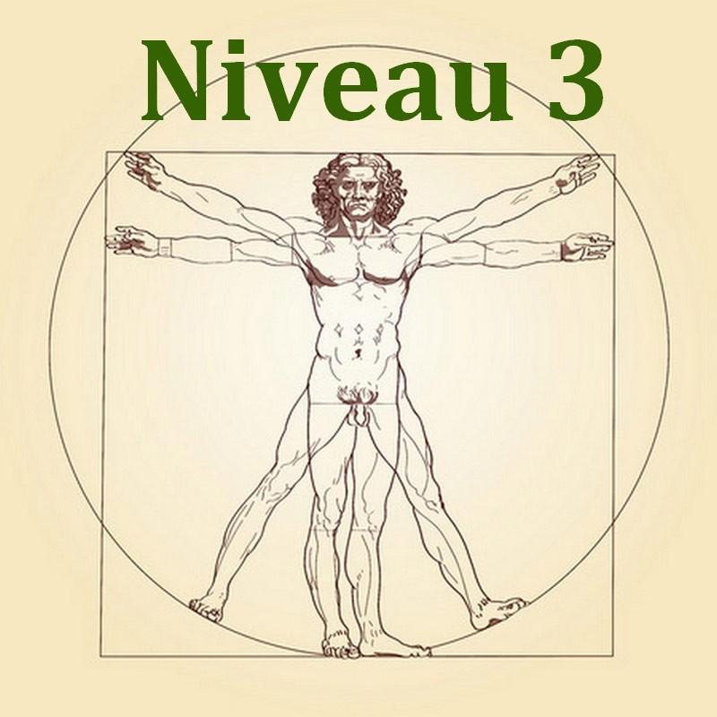 formation naturo module anatomie et physiologie niveau 3
