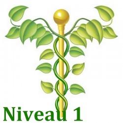 formation naturo module Bases de la naturopathie niveau 1