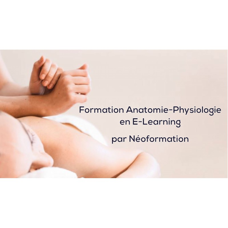 anatomie physiologie - naturopathie - formation E-learning