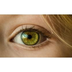 iridologie, E-Learning, foad, formation à distance