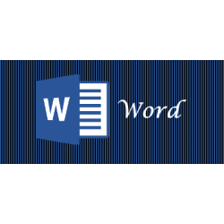 formation Word bureautique en visio conférence. Prise en charge possible CPF
